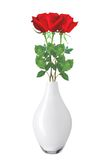 Beautiful red roses in vase isolated on white Stock Photography