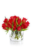 Beautiful red roses Royalty Free Stock Photos