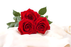 Beautiful red roses on a yellow silk Royalty Free Stock Photos