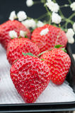 Beautiful red strawberries. Some beautiful red strawberries and some little white flowers Stock Images