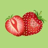 Beautiful red strawberry  illustration. Strawberry fruit isolated. Light green background Stock Image