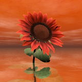 Beautiful red sunflower - 3D render Stock Photography