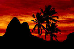 Beautiful Red Sunset. Behind Mountains and Palms in Ipanema Beach, Rio de Janeiro, Brazil Royalty Free Stock Photos