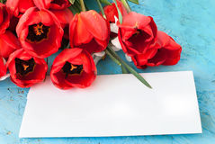 Beautiful  red  tulips and card Stock Photos