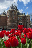 Beautiful red tulips near brown castle in Amsterdam in the spring Royalty Free Stock Photos