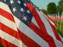 Beautiful red white and blue. Many united states flags royalty free stock image