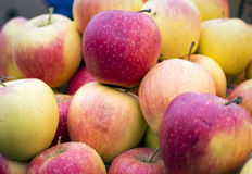 Beautiful red and yellow apples on the market Stock Photo