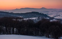 Reddish winter dusk in mountains with high peak. Beautiful reddish winter dusk in mountains with high peak. dark leafless forest on snow covered hills Stock Image
