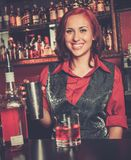 Beautiful redhead barmaid Stock Photos