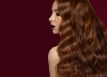 Beautiful Redhead girl with a perfectly curls hair and classic make-up. Beauty face. Stock Photography