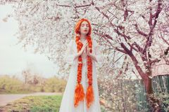 Free Beautiful Redhead Girl With Plait On Spring Bloom Garden Background. Woman In Pastel Dress In Nature On Sakura Background. Bloom Royalty Free Stock Photo - 141004815