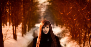 Beautiful redheaded girl Royalty Free Stock Images