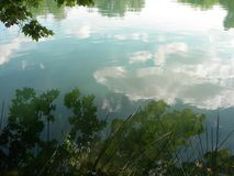 White clouds and green trees reflected on the water. Beautiful reflect of some white clouds in a quiet lake wiht plants, relax, peace, calm, white, blue royalty free stock photography