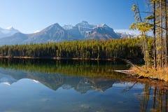 Beautiful Reflection stock photography