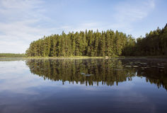 Beautiful reflection of forest in lake in summer. Stock Images