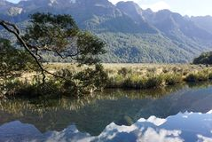 Beautiful reflection of the landscape of the meadow in mirror la Royalty Free Stock Images