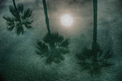 Beautiful reflection of moon and palm trees on water Stock Images