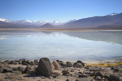 Beautiful reflection in mountain lake at Altiplano, Bolivia Royalty Free Stock Photography