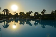 Sunrise by the pool with palm trees royalty free stock image