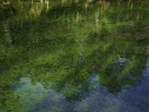 River Reflection Royalty Free Stock Photography