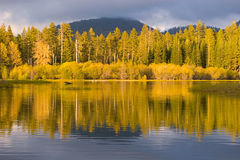 Beautiful Reflections. Refection of Trees in Manzanita Lake stock photography