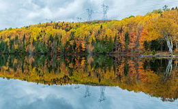 Beautiful reflections of a autumn forest in a lake Royalty Free Stock Photo