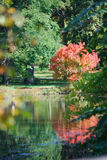 Beautiful reflections in Lake Marmo in the fall at Morton Arboretum. Royalty Free Stock Photos