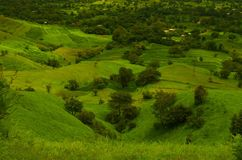 Green fields on a mountain slope-3 Stock Photography