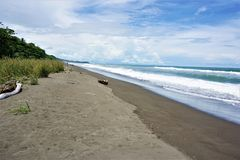 Beautiful and relaxing beach in Costa Rica royalty free stock images