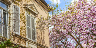 Beautiful residential architecture and gardens in spring on the Stock Photos