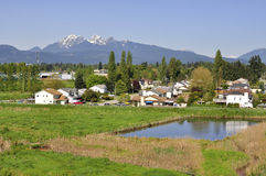 Beautiful Residential Area in Pitt Meadows Stock Photography