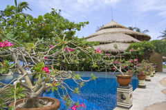Beautiful Resort Scene in Bali ,Indonesia. Royalty Free Stock Image