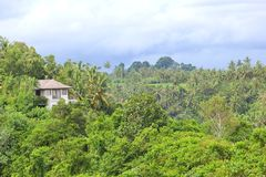 Tropical paradise and resort, Bali, Indonesia royalty free stock photography
