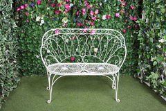 Beautiful retro bench. Near to  verdant hedge with small flowers Stock Photography