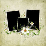 Beautiful retro spring frame Royalty Free Stock Image
