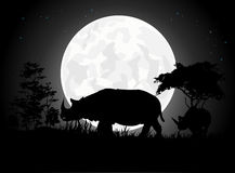 Beautiful Rhino silhouettes with giant moon background Stock Images