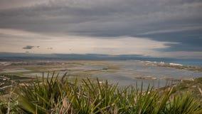 Beautiful rice fields in Albufera, Spain. Top view of rice fields in Albufera, Valencia, Spain. 4k stock video