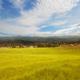 Beautiful rice fields in mountain and cloud sky Royalty Free Stock Image