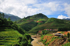 Beautiful rice terraces in Sapa,Vietnam Royalty Free Stock Photos