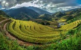 Beautiful Rice Terraces, South East Asia Stock Photo