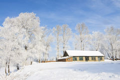 Beautiful rime of the north of China Stock Photos