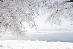 Beautiful rime of the north of China Royalty Free Stock Photo