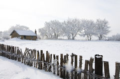 Beautiful rime of the north of China Stock Image