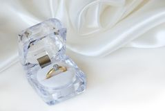 Beautiful ring Royalty Free Stock Image