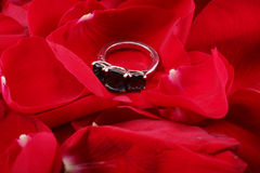 Beautiful ring in petals of red roses Stock Images