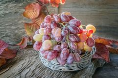 Beautiful ripe bunch of grapes on a wooden table in a wicker round basket stock photos