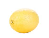 Beautiful ripe lemon. Stock Photo