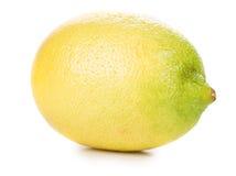 Beautiful ripe lemon. Stock Image