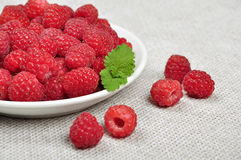 Beautiful ripe raspberries Stock Photography