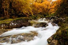 Beautiful river Royalty Free Stock Photos